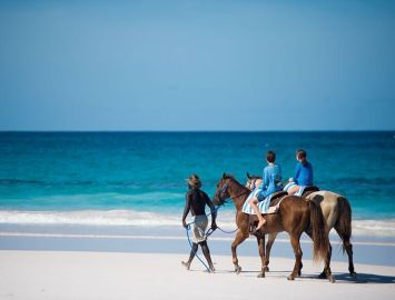 Horseback Riding on Pink Sands Beach