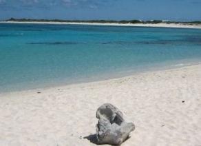 Moores Island Beach
