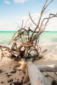 Sugar Cave Beach, The Berry Islands