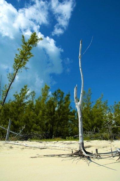 Cat Island Bahamas Weather February